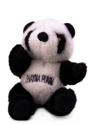 Picture of #904 Shayna Punin   - Panda